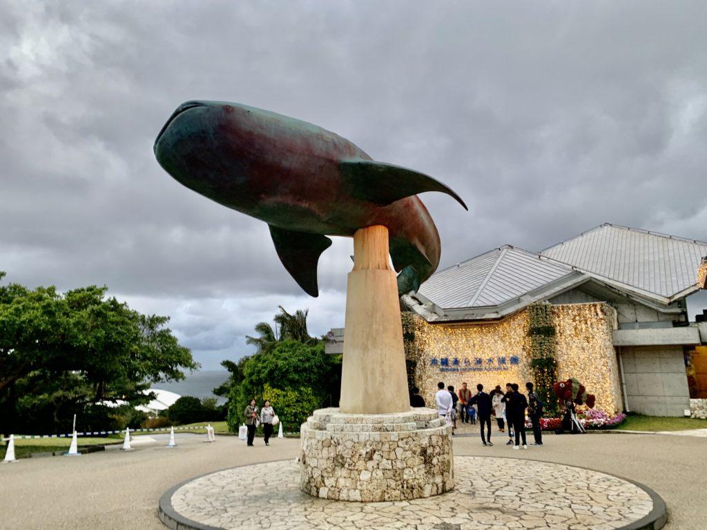 美ら海水族館ナイトアクアリウム